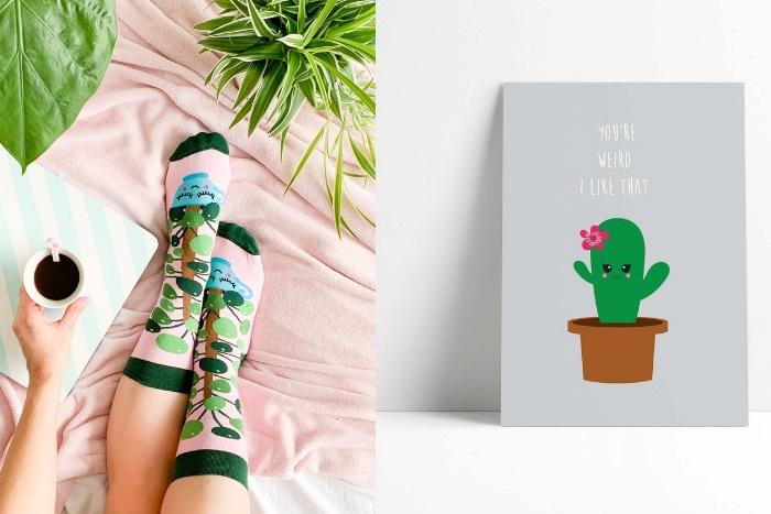 Geschenkidee Plantlovers Pflanzenliebhaber Pilea Socken Kaktus Postkarte